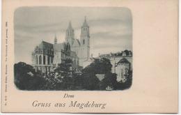DOM  GRUSS AUS MAGDEBURG - Magdeburg