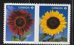 CANADA, 2011,  MNH, # 2444i,    SUNFLOWERS    DIE CUT From Quartely Pack - Booklets