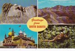 Greetings From South Dakota Corn Palace Mount Rushmore Bad Lands & Pheasant The State Bird - Health