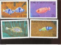 TURKS & CAICOS   1055-62  MINT NEVER HINGED SOUVENIR SHEET OF FISH-MARINE LIFE - Fische