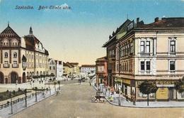 Subotica (Serbie) - Szabadka - Baro Eotvos Utca - Edition Lipsitz - Carte Colorisée, Non Circulée - Serbia