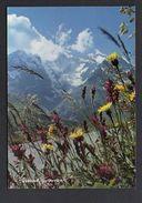 Photographe Bernard Grange  N° 1061 / Vie En Montagne - Autres Photographes