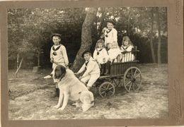 CHIEN DES PYRENEES PATOU PASTOU - ARCACHON 1902 PHOTO RENAUDEAU - Cani