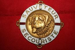 Ancien Insigne  Sauveteur Secouriste CRS - Police & Gendarmerie