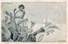 CACTUS - Cactusses