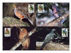 WWF Christmas Island Weihnachtsinsel Birds Landvögel Oiseaux 2002 CM MK MC Maxi Carte Maximum Card Maxicards Maximumkart - Collections, Lots & Series