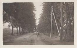 ROMANIA - Village Scene 1932 - Foto Sinaia - Roemenië