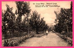 EP N° 59 - Série N° 43 - De KAMBOVE - Congo Belge - Poste De La Lowa - Plantations De Funtumia - Animée - 10 Cts Carmin - Entiers Postaux