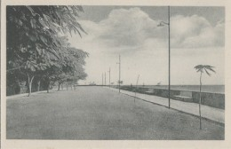 Afrique - Mozambique - Beira - Ex Portugal - Um Especto Da Avenida Marginal - Mozambique