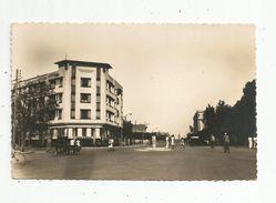 Cp , MAROC , MARRAKECH , Avenue MANGIN , écrite1950 , Ed : La Cigogne - Marrakech