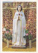 Pilger Madonna - Der Rosa Mystica   ***99999-471** - Maagd Maria En Madonnas
