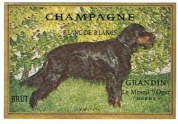CHAMPAGNE  GRANDIN  LE MESNIL SUR OGER   BLANC DE BLANCS   LE MESNIL SUR OGER   CHIEN   ****  A SAISIR **** - Champagne