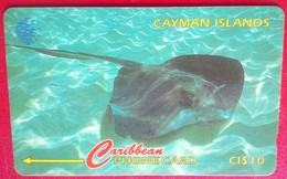 Cayman Islands 94CCIE Stringray $10 - Cayman Islands