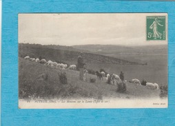 Auteuil. - Les Moutons Sur La Lande ( Effet De Soir ). - France