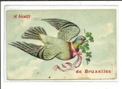 Bruxelles A Bientôt De ... ( Pigeon ) - Bruxelles-ville