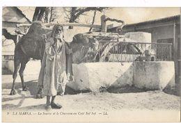 La Marsa - La Source Et Le Chameau Au Café Saf-Saf - Tunisie