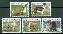 Afghanistan 1999 Dogs / Chiens / Honden - Afghanistan