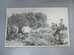 CPA PHOTO AGRICULTURE ATTELAGE CHARRUE MOISSONNEUSE - Attelages