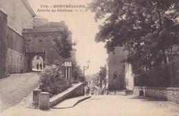 MONTBELIARD  ENTREE DU CHATEAU (dil198) - Montbéliard