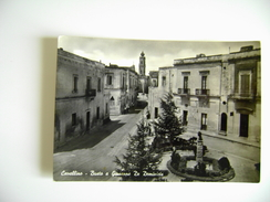 CAVALLINO  BUSTO A GIUSEPPE DE DOMINICIS   LECCE   VIAGGIATA COME DA FOTO - Lecce