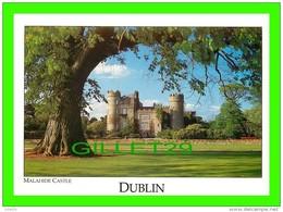 DUBLIN, IRELAND - MALAHIDE CASTLE - REAL IRELAND DESIGN LTD - LIAM BLAKE - - Dublin