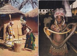 Lot (LX5) - 10 AK - AFRICA  IN  PICTURES - Cartoline