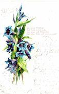 Ein Steter Frühling Soll Dein Leben Sein, Ein Lenz Voll Blütenduft - Gentianes - Flores