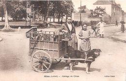 Gien . Loiret . Attelage De Chien .Boulangère . Edition Lioret . - Gien