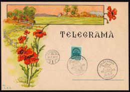 1940 Hungary Occupation TELEGRAPH TELEGRAM TELEGRAMA 1940 ROMANIA Kolozsvar Cluj-Napoca LX11 - Poppy FLOWER - Télégraphes