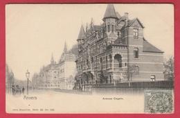 Antwerpen / Anvers - Avenue Gogels - Série Nels N° 136 - 1905 ( Verso Zien ) - Antwerpen
