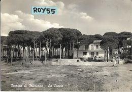 Lazio-latina-marina Di Minturno Scauri La Pineta Veduta Villa Interno Alla Pineta Anni 50/60 - Altre Città