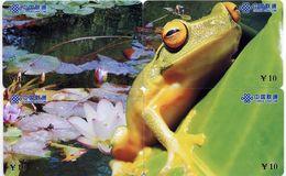 Grenouille Frog Puzzle 4 Télécartes Chine  Phonecard  Telefonkarte - Puzzles