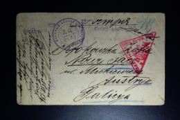Russia POW  Postcard Petropalovsk 1916 To Austria Censor Cancels - Briefe U. Dokumente