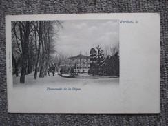 MEUSE  55  VERDUN       PROMENADE DE LA DIGUE        TTB - Verdun