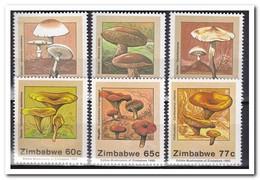 Zimbabwe 1992, Postfris MNH, Mushrooms - Zimbabwe (1980-...)