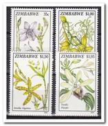 Zimbabwe 1993, Postfris MNH, Flowers, Orchids - Zimbabwe (1980-...)