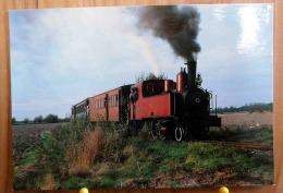 LOCOMOTIVE 130 T CORPET-LOUVET DE 1906 ENTRE NOYELLES ET LE CROTOY SCAN R/V - Trains