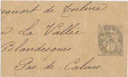 25717. Gran Fragmento Banda Publicacion Entero Postal 1 Cent FRANCE, Type Blanc - Bandas Para Periodicos