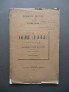 La Galleria Elicoidale Di Vernante Muzzani Negro Torino 1890 Ingegneria Tavole - Unclassified