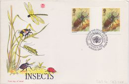 GREAT-BRITAIN :1985: Y.1176(2x) On FDC : ## Insects Of The United Kingdom ##:  STAG BEETLE,LUCANE,COLÉOPTÈRE,KEVER, - Insekten