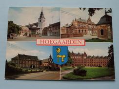 Hoegaarden ( Lander / Bosmans-Vandecruys Doelestraat ) Anno 19?? ( Zie Foto Voor Details ) !! - Hoegaarden