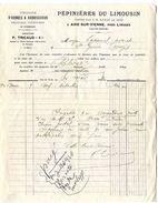 87  AIXE SUR VIENNE PEPINIERES DU LIMOUSIN  -  P TRICAUD   -  FACTURE 1920 - Alimentos