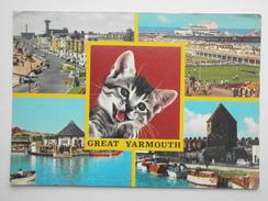 Postcard Great Yarmouth Marine Parade Wellington Pier Boating Lake Yacht Basin By Don's Supplies PU 1981 My Ref B21958 - Great Yarmouth