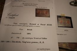 (paire)Timbres Brésil 100+100 . Tête-beche .neuf Avec Gomme,B.,R.1891 - Neufs