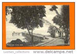 SÃO TOMÉ E PRINCIPE 1910 YEARS RAILROAD CHEMIN DE FER & TRAIN TRAINS AFRICA AFRIKA AFRIQUE POSTCARD - Sao Tome And Principe