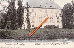 Environs De Bruxelles - Château Termeeren à Pepinghen Près De HAL - Pepingen