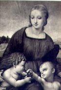 Firenze - Galleria Degli Uffizi - Raffaello - Madonna Del Cardillo - Particolare - Formato Grande Non Viaggiata – E 2 - Firenze (Florence)