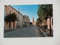 CAMPOBASSO - San Martino In Pensilis - Via Matteotti - Campobasso