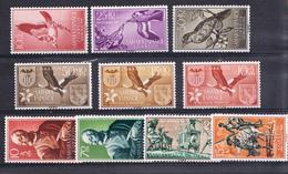SAHARA  1958. AÑO COMPLETO .EDIFIL Nº 146/155.NUEVA SIN  CHARNELA   CECI 2  Nº 70 - Sahara Español