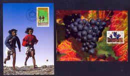 LIECHTENSTEIN - Annata Completa 1994 Maximum Karte - Liechtenstein